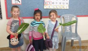 Who grows (and eats) Swiss chard? We do!